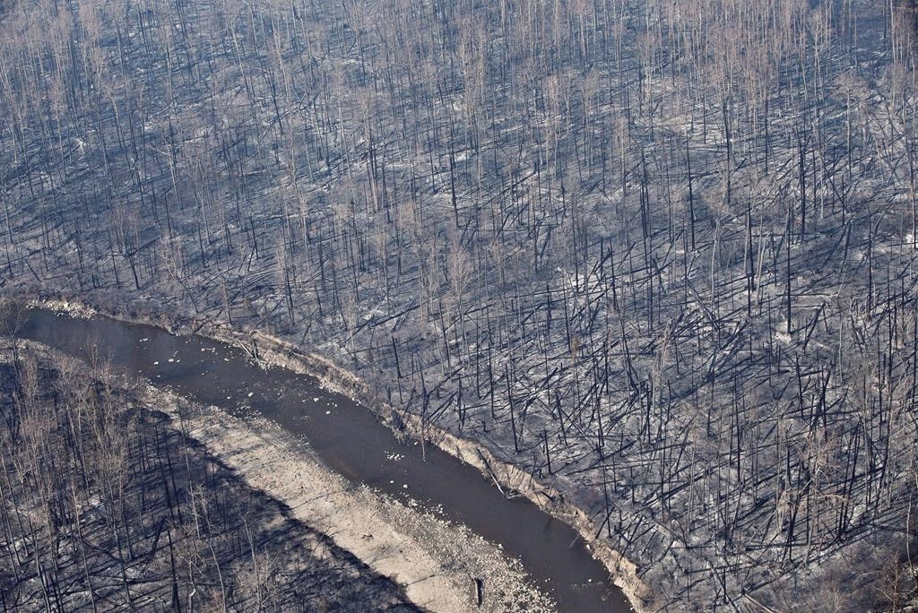 Fort McMurray , region with upwards of 88,000 people forced from their homes. Firefighters were assisted by personnel from the  Canadian Forces ,  Royal Canadian Mounted Police , other  Canadian  and nations to fight the wildfire.
