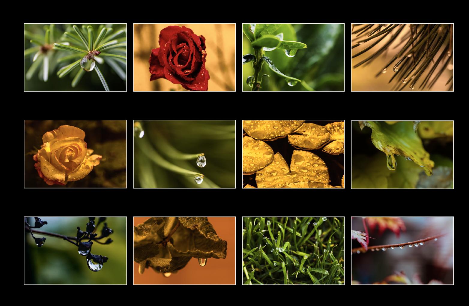 Bildschirmfoto 2019-02-15 um 16.42.48.png