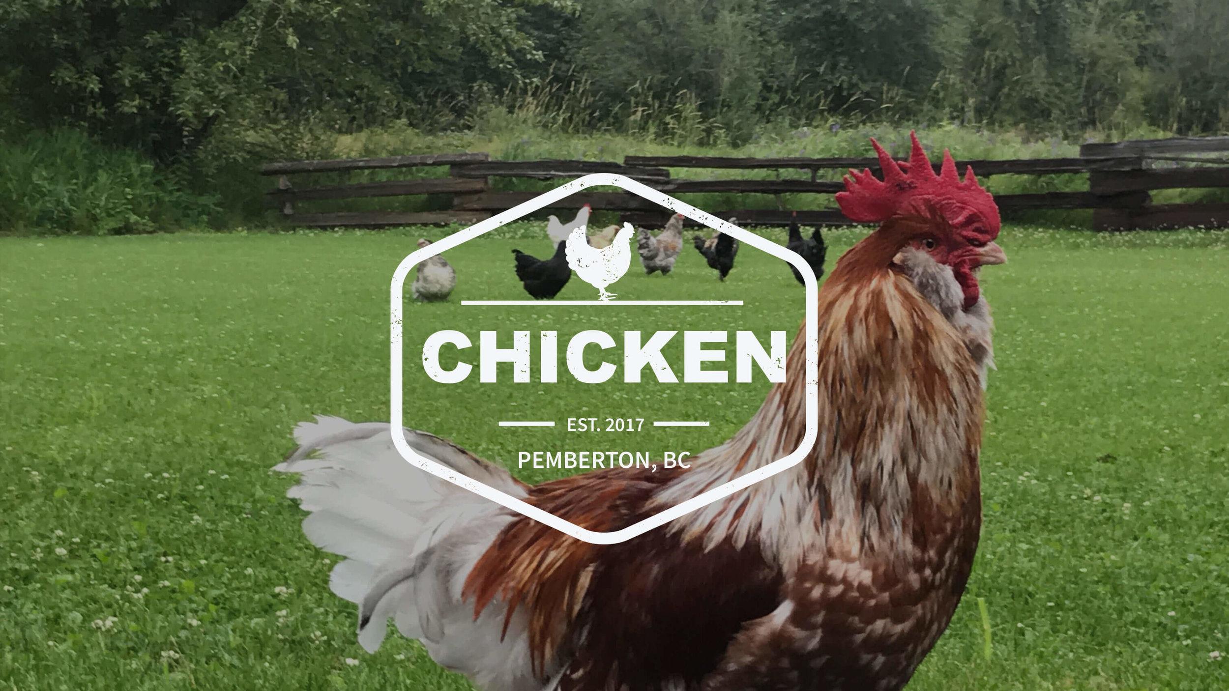 pemcap-chicken.jpg