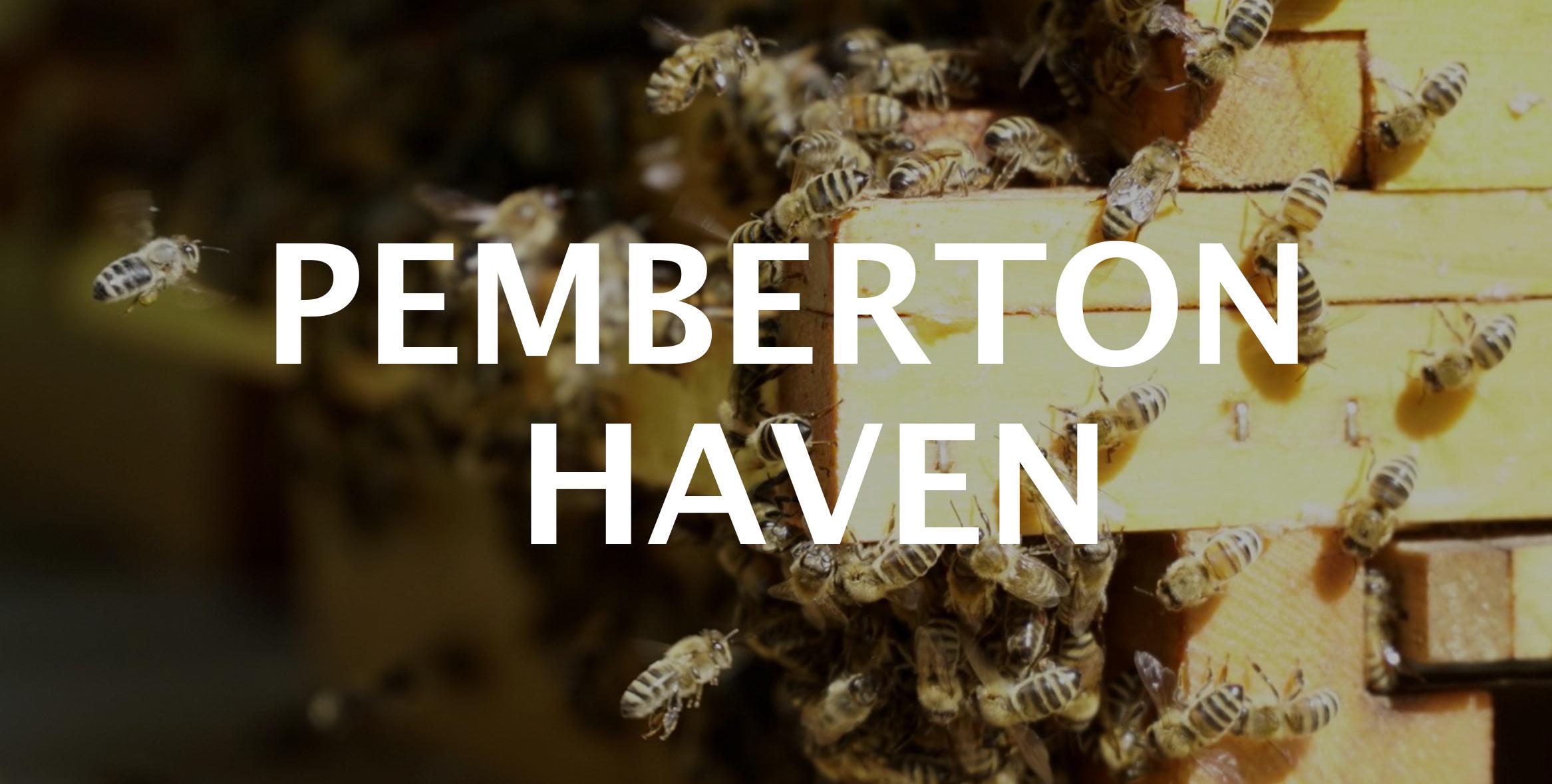pemcap-haven-home-bees.jpg