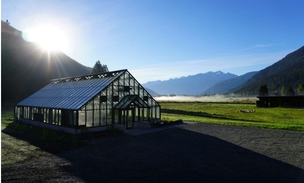 3000 sqft Greenhouse - We are proud to announce the addition of a 3000 sqft greenhouse. The greenhouse was completed in September 2018 and now we will start growing vegetables all year round.