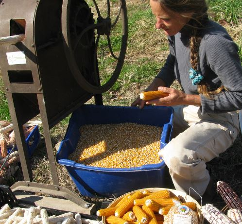 "Salamander Springs Farm - Susana Lein""Nutrient-dense, safe and healthy food requires a healthy, LIVING SOIL""-Spent some time in Central America, built her own tiny sustainable home-Products: corn, popcorn, herbs, spices, peppers, berries, seasonal produce-Attends Saturday markets"