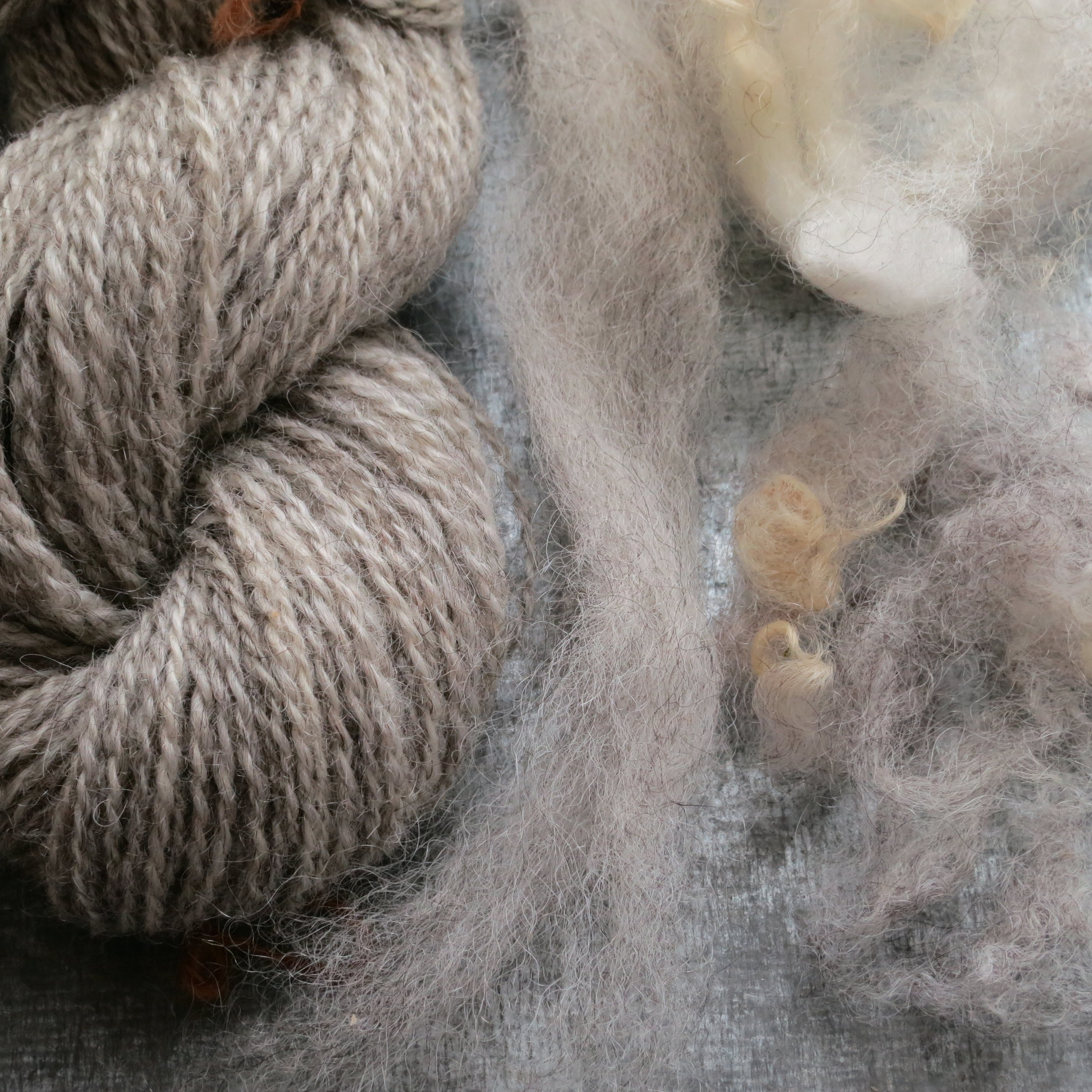 Handspun yarns from the fleeces of Kiira and Silvo, two Gotland x Finn sheep from Prairie Willows Farm.