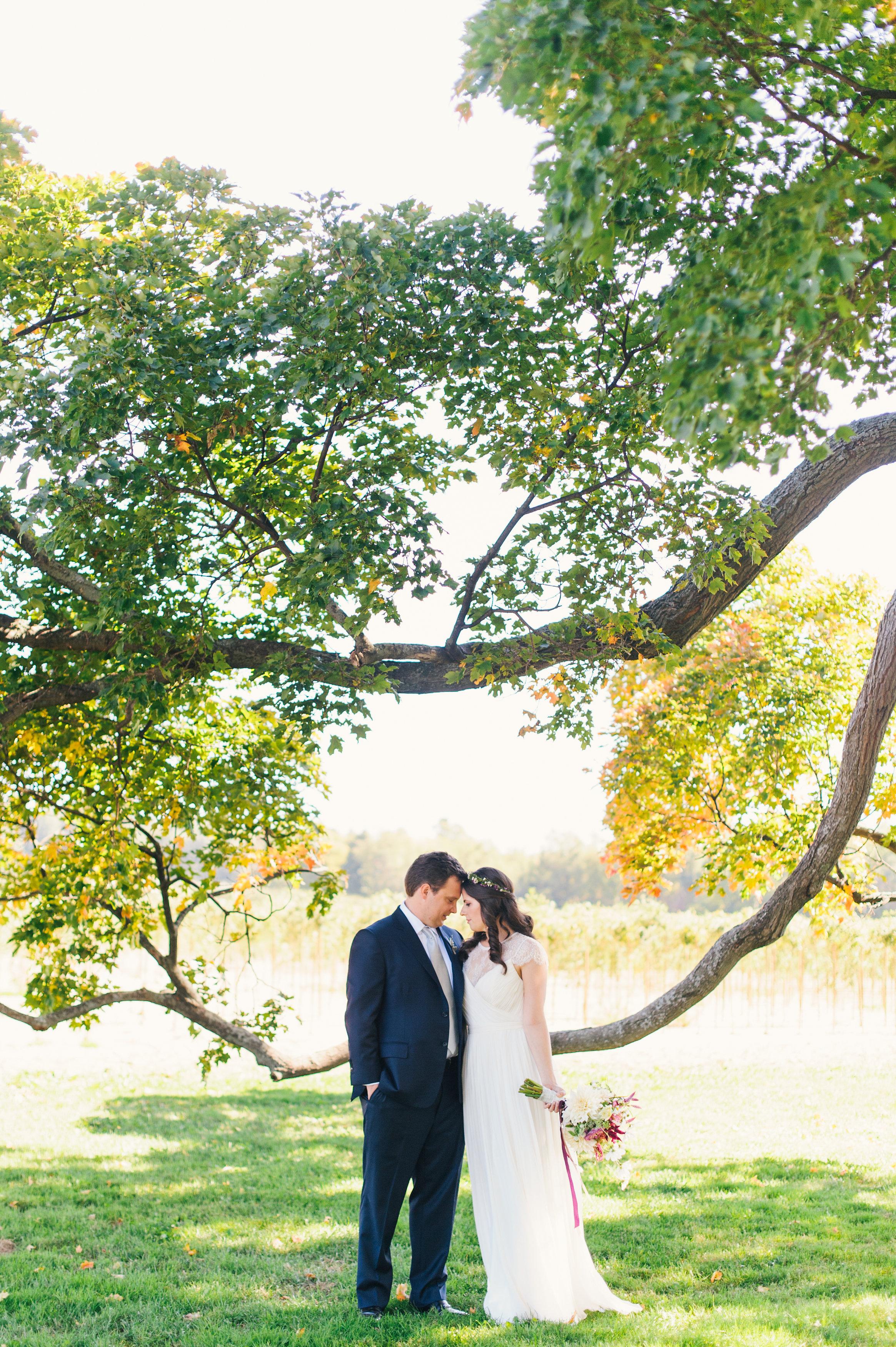 marial-daniel-wedding-balls-falls-sara-wilde-photography-0302.jpg
