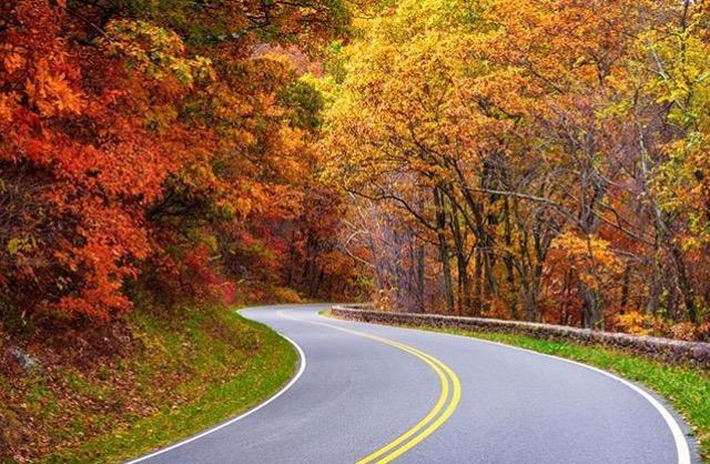 Skyline Drive, Shenandoah National Park PC: @blueridgeimagery