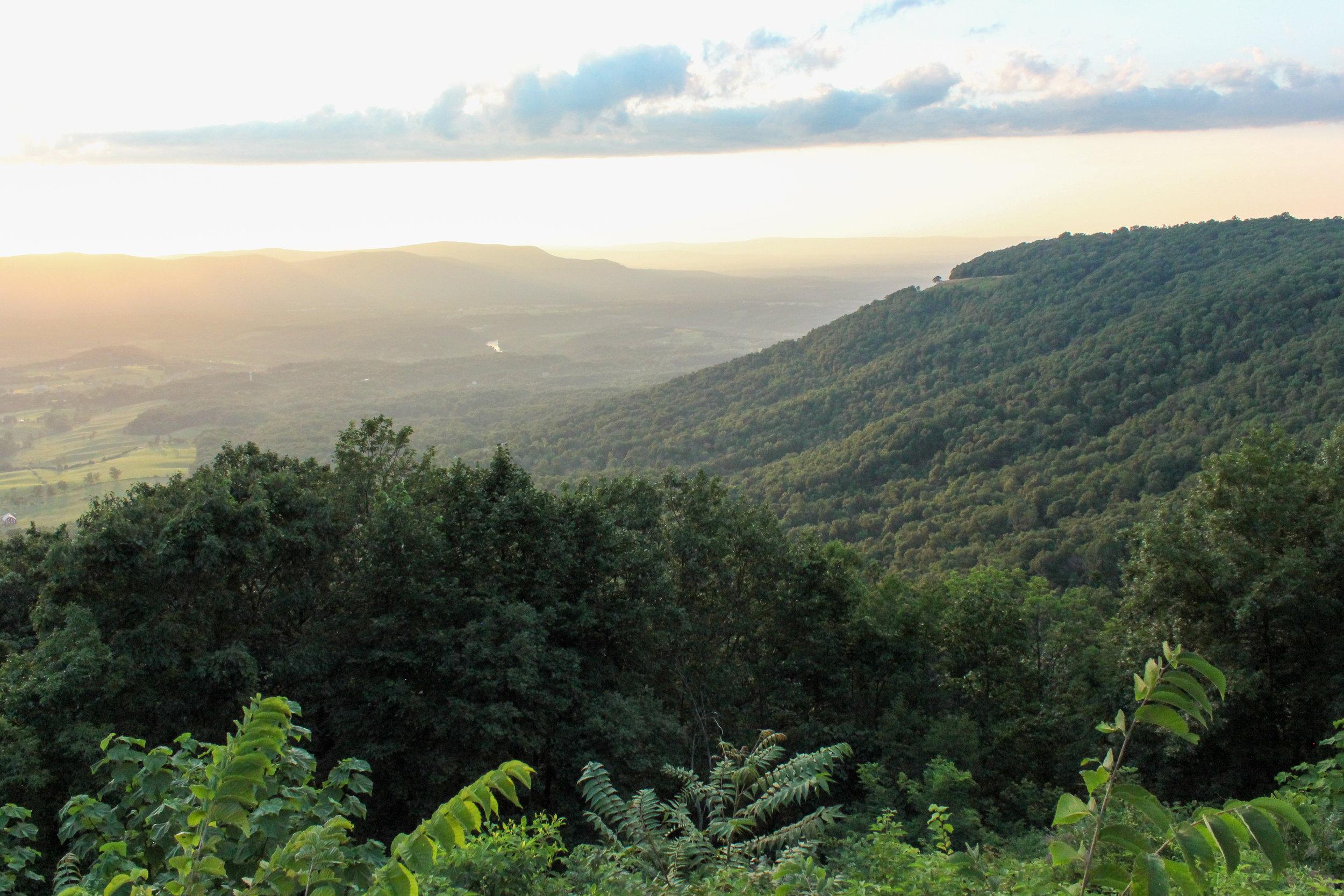 Shenandoah National Park by founder Osman Mansaray