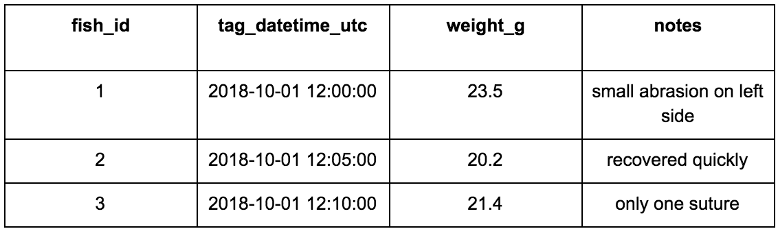 Example Table 1