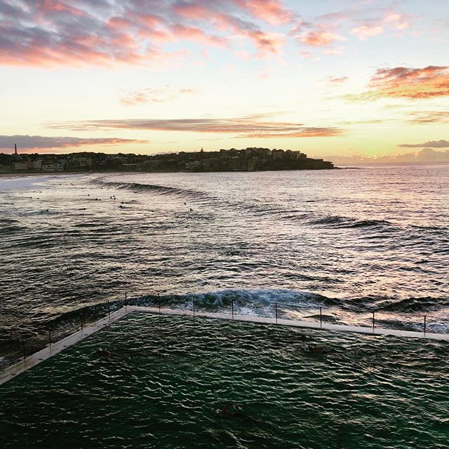 Bondi you are something special... #bondi #love #surf #cleanliving #morning #madeinaustralia
