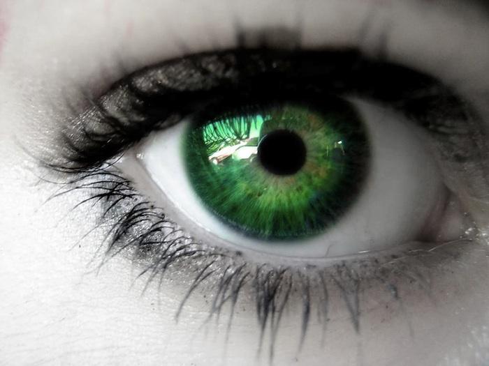 mbb-eyes.jpg