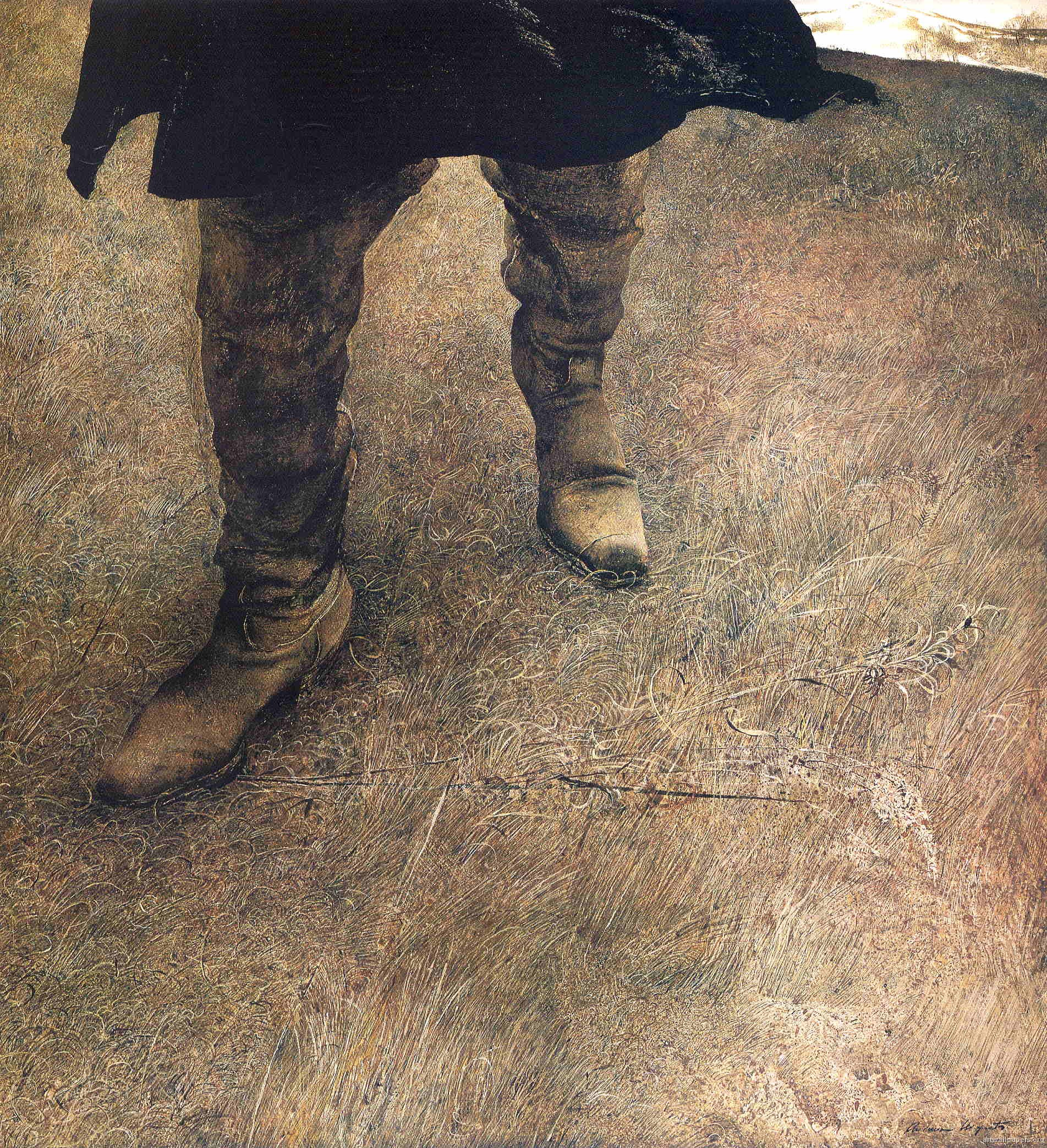 Andrew Wyeth Trodden Weed 1951