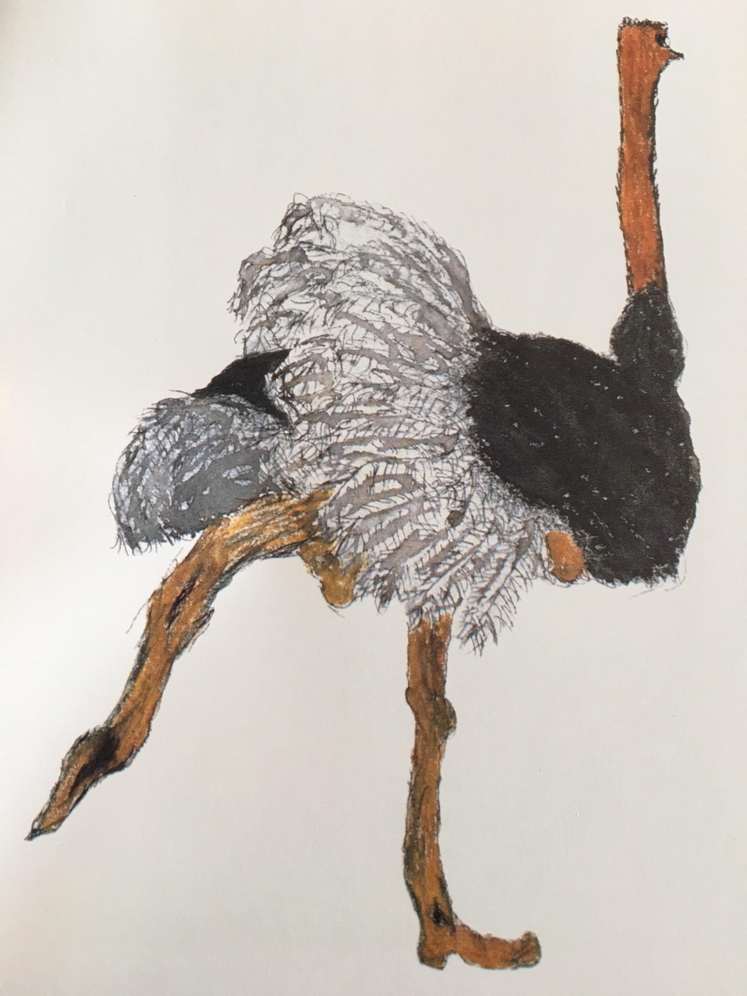 mercecunninghamostrich