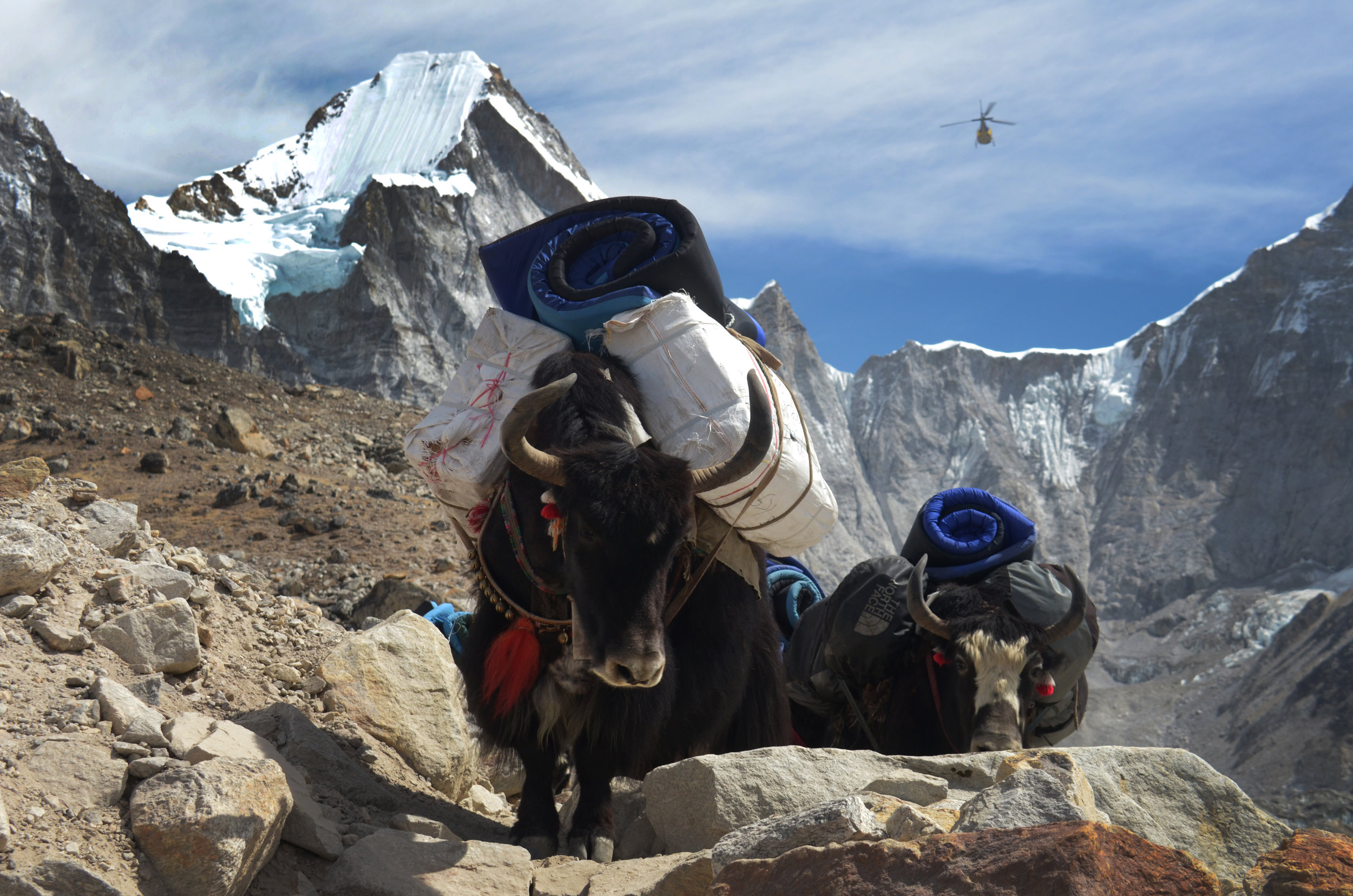 Mt Everest Base Camp Tour Package