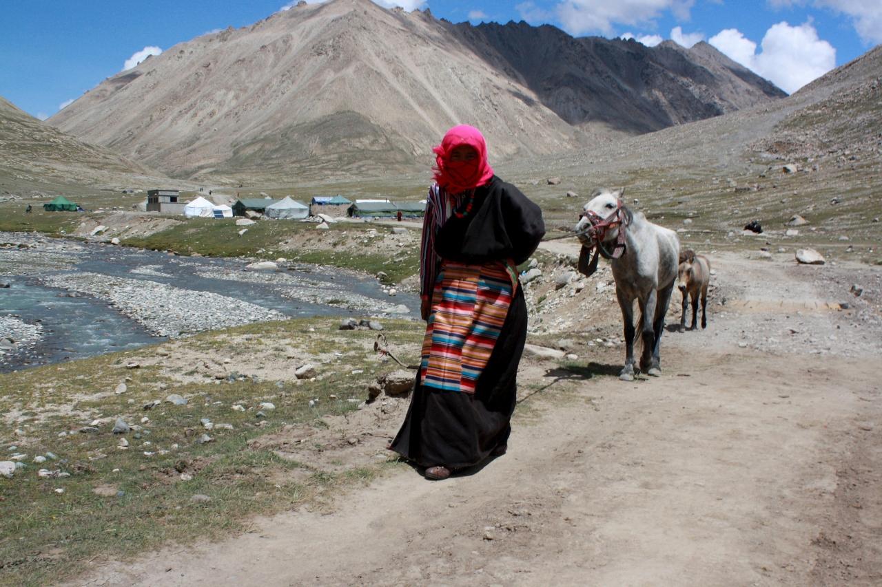 Nomad at Kailash.jpg