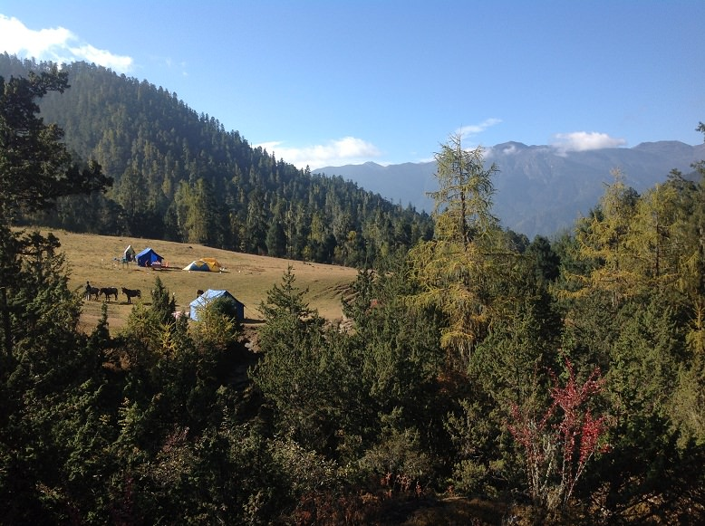 Camping on the Sagala Trek