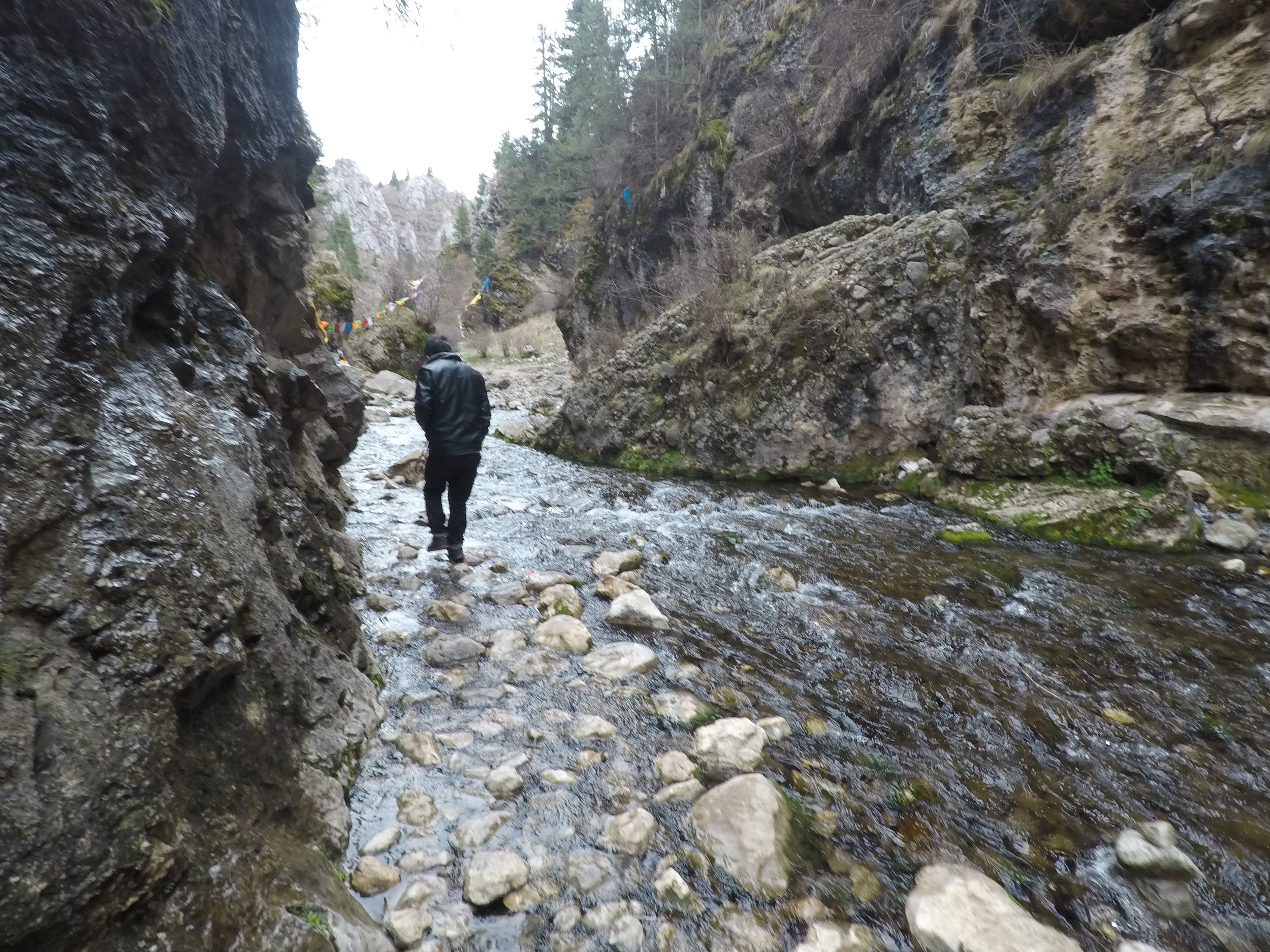 Following the stepping stones up the gorge.