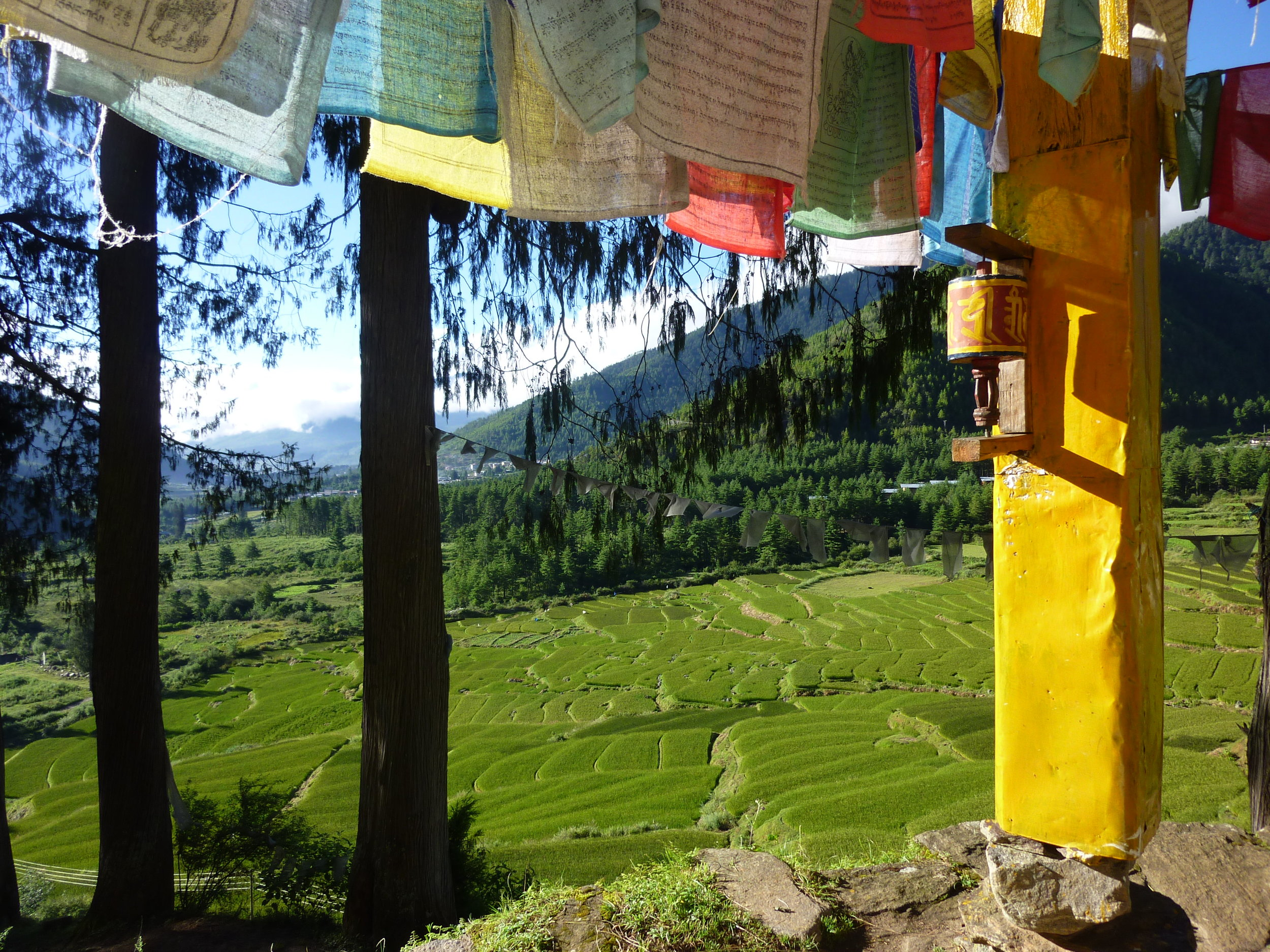 Paro Valley (2).jpg
