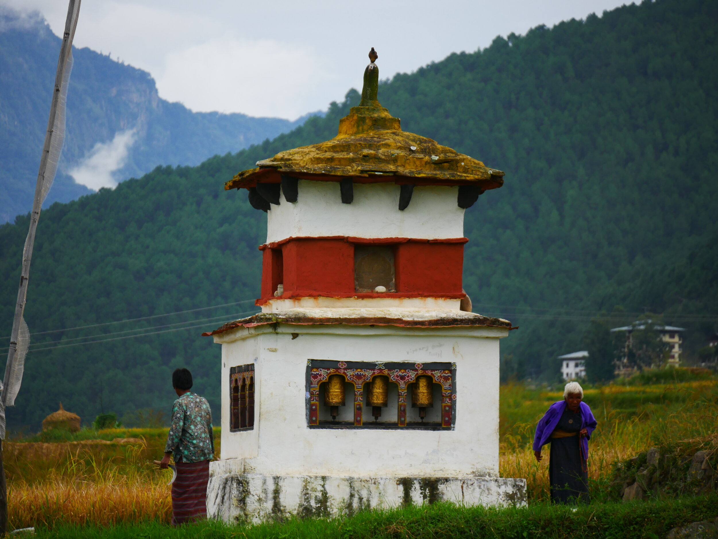 Central & Western BhutanWalking Holiday - from US$4,245