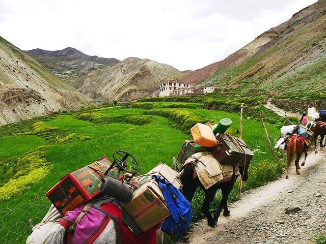 Ladakh Trekking - enquire for price