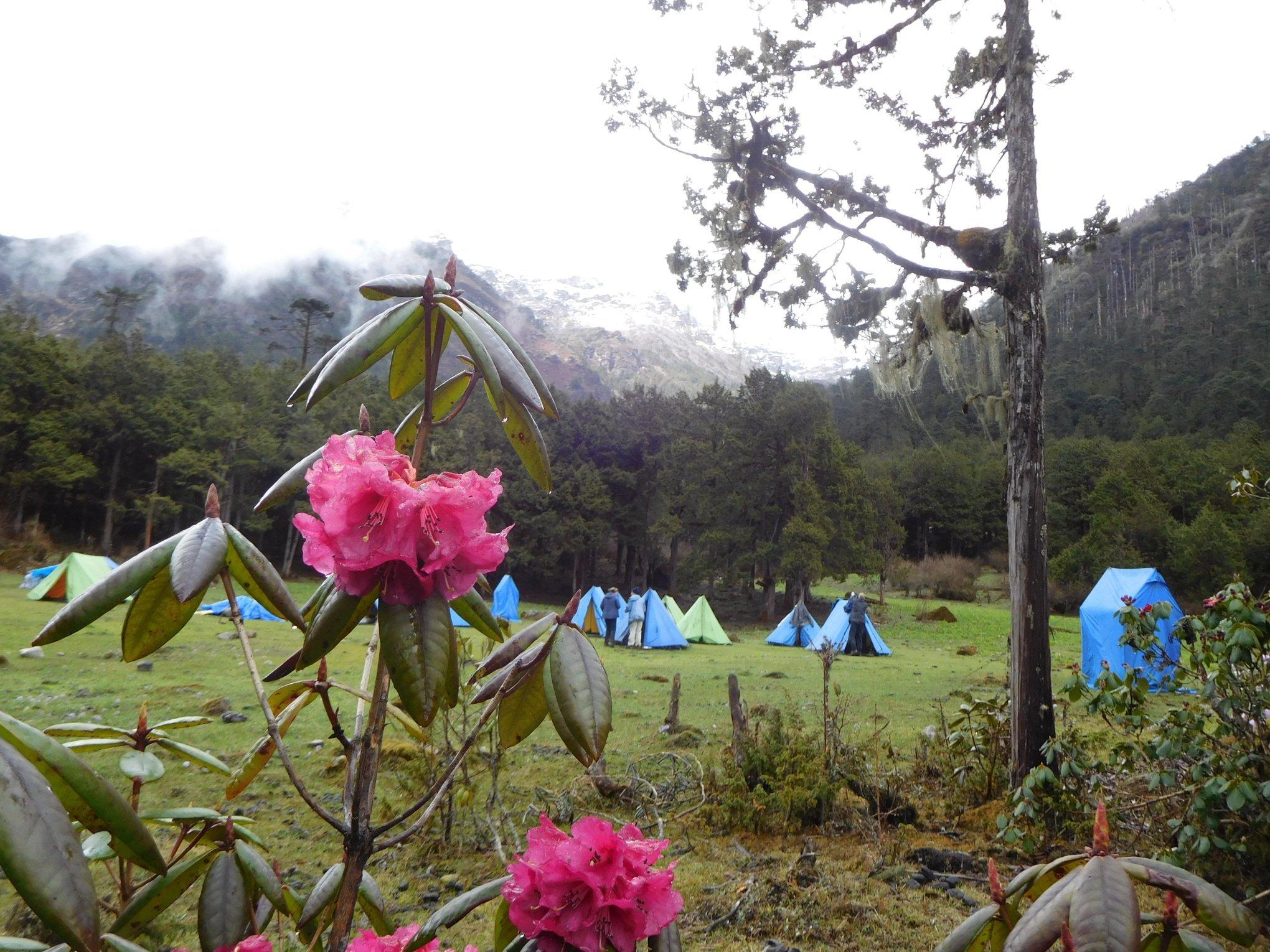 Druk Path Trek, Bhutan - from US$3,445 pp