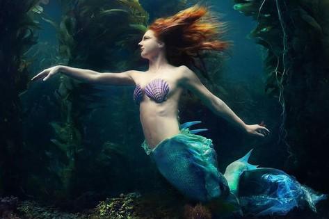 Underwater Fine Art of Mermaid by Brenda Stumpf
