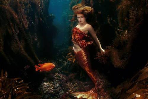 Mermaid at Catalina Island.jpg