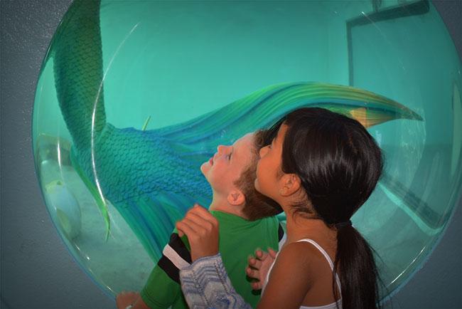 kids-looking-up-at-mermaid.jpg