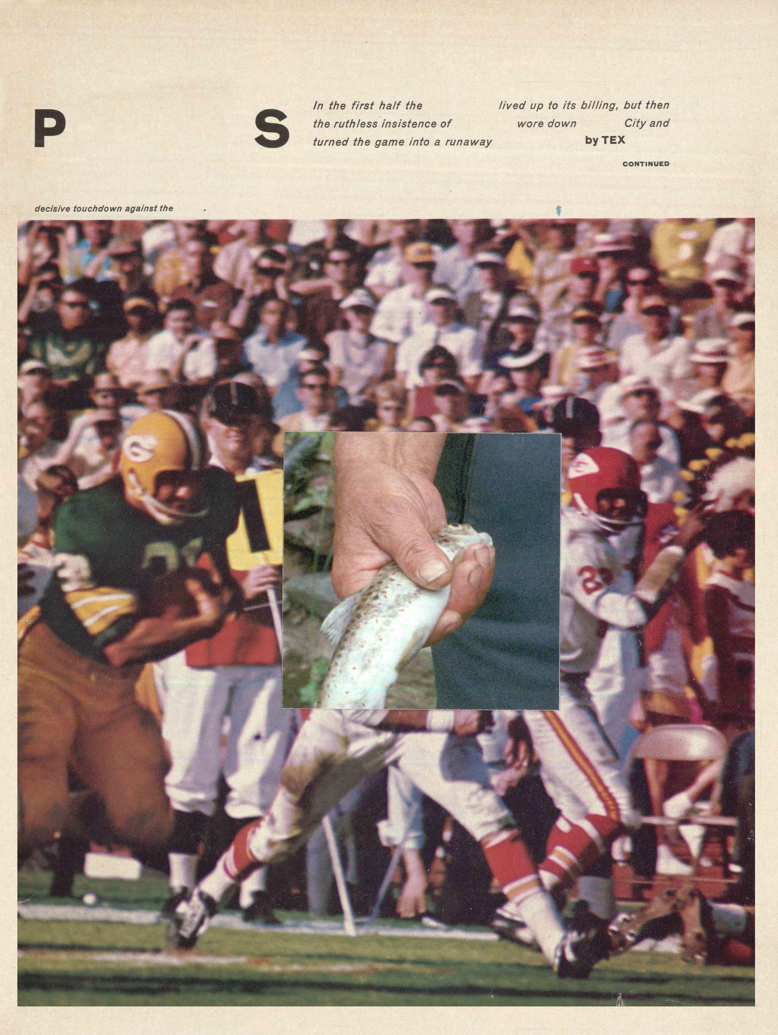 fish mag.JPG