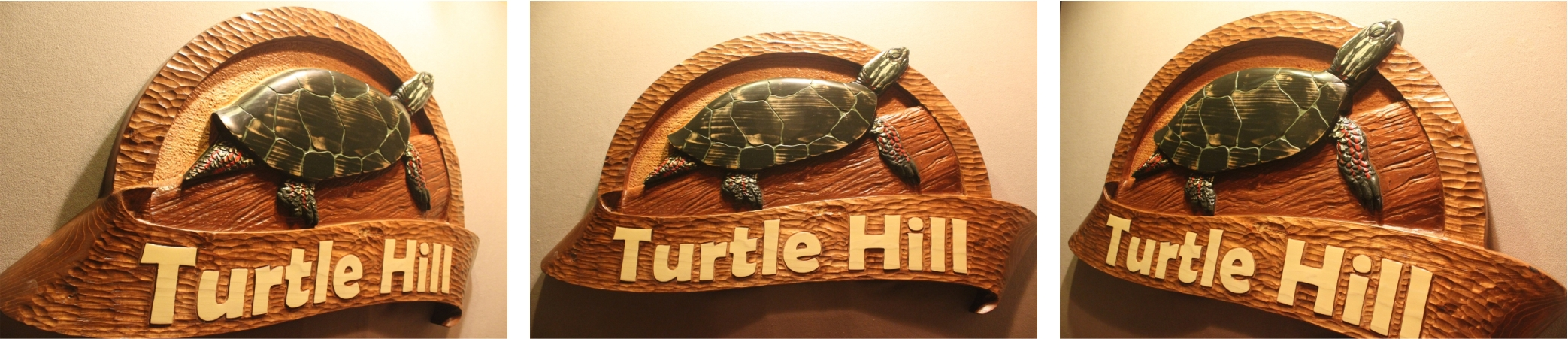 Turtle Signs, Animal Signs, Pet Signs by Fox Wood Signs
