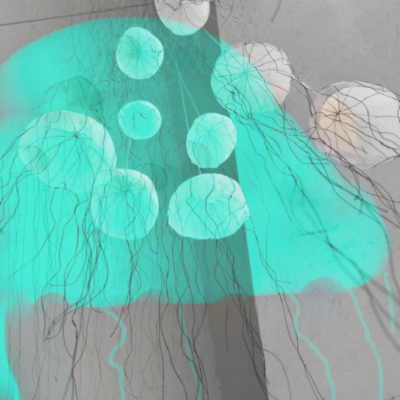 Medusa series.jpg