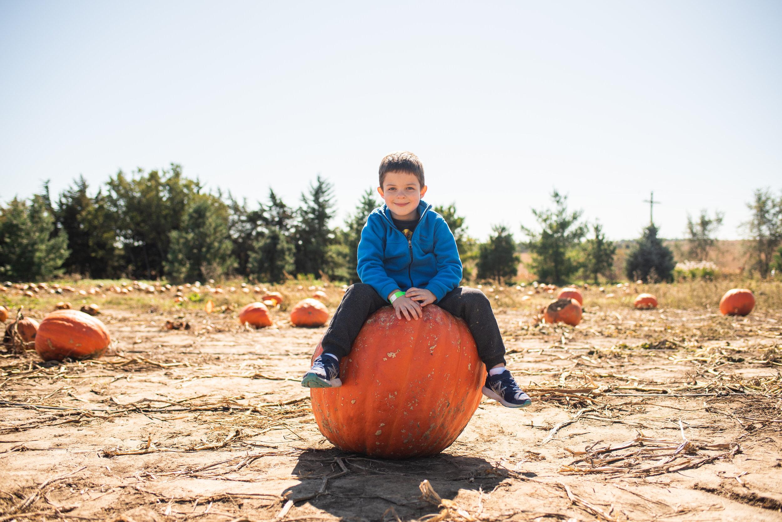week 41 Misty Prochaska Lincoln Nebraska Project 365-5.jpg