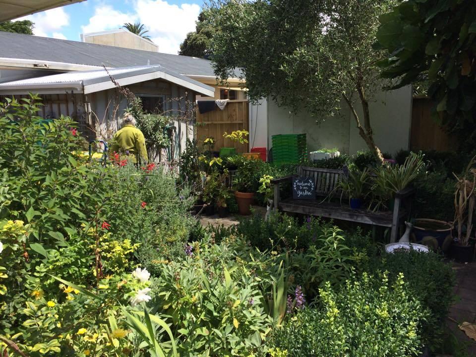 Cute Herb Garden at some hippie herbal store