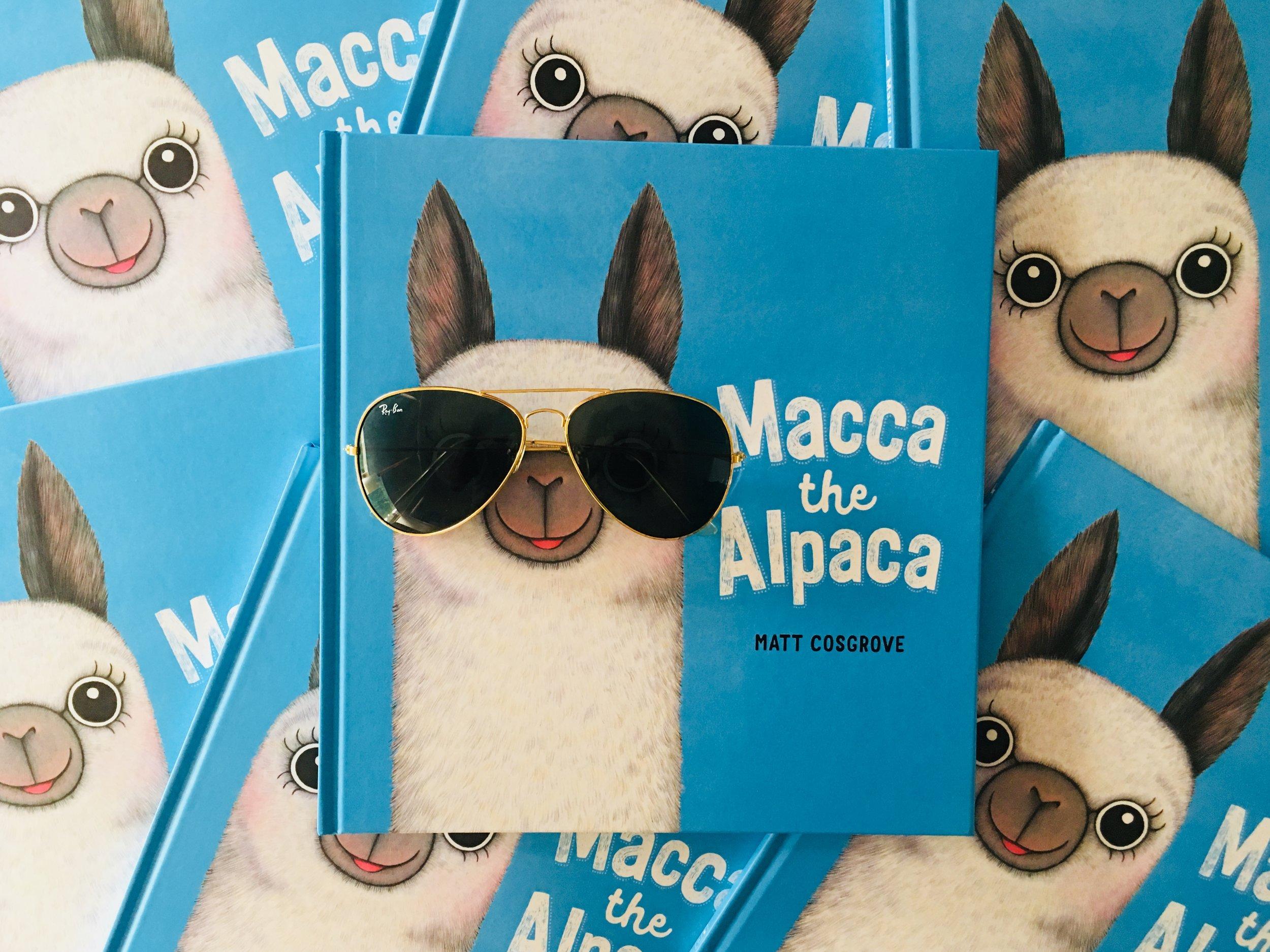 MaccaTheAlpaca.jpg