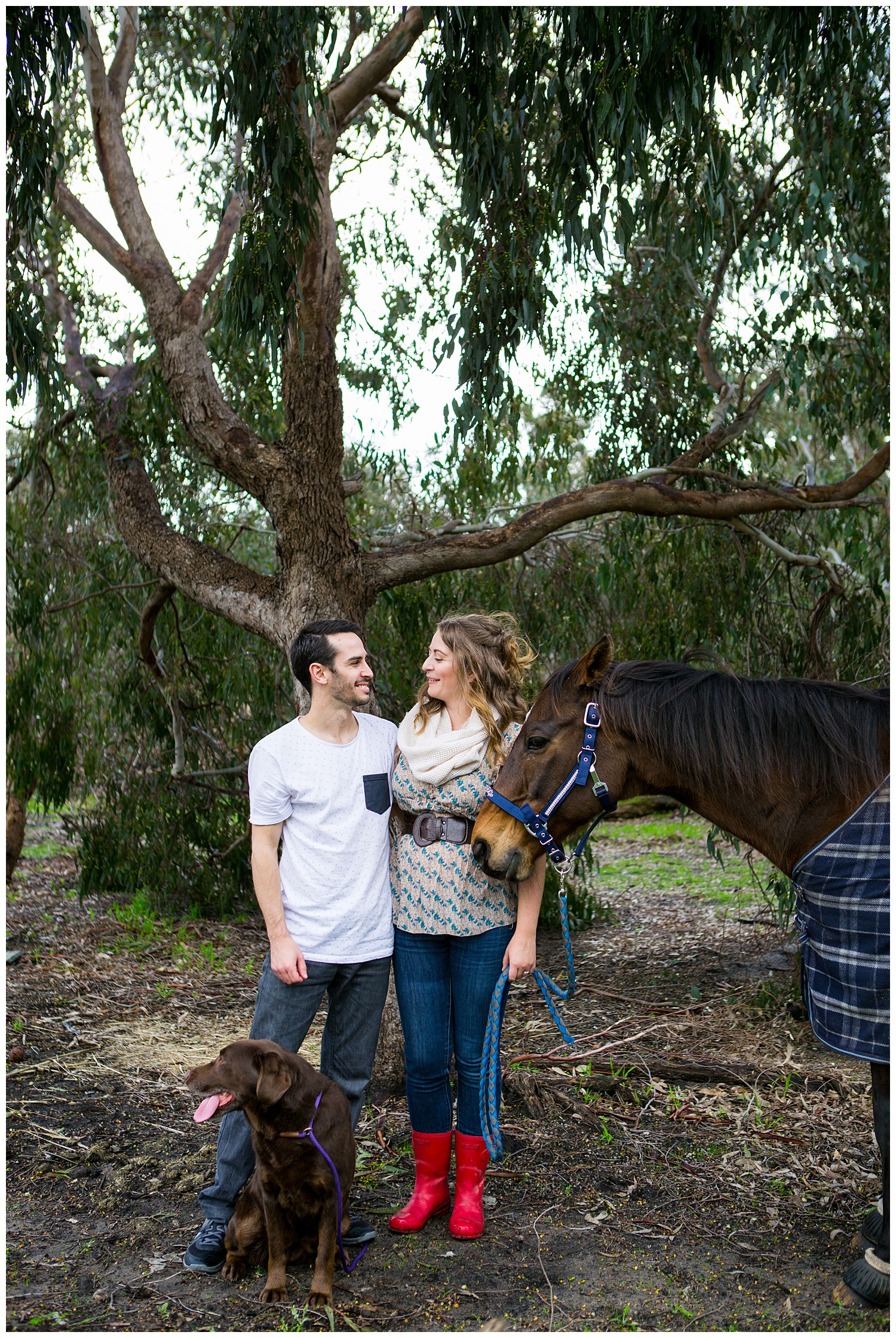 farm_engagement_horse_dog_western_australia_0007.jpg