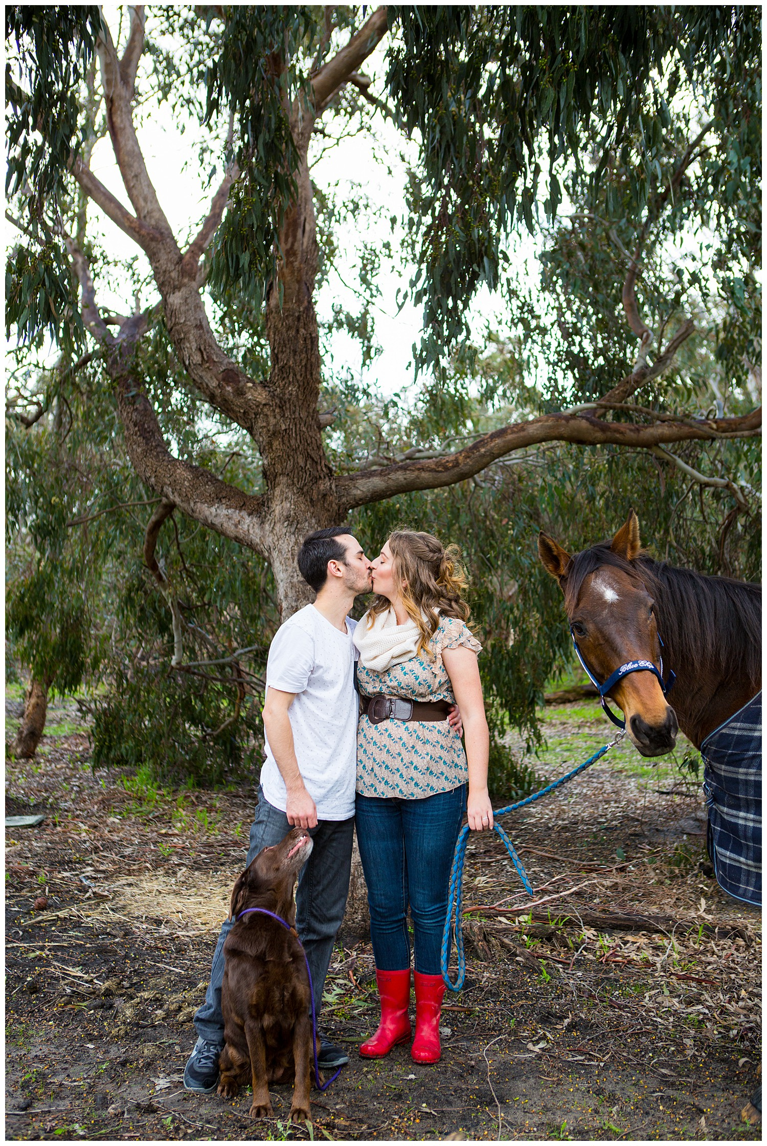 farm_engagement_horse_dog_western_australia_0008.jpg
