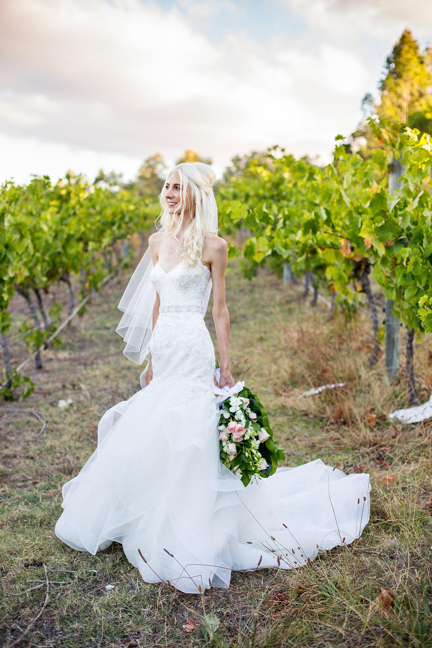 wise_wines_southwest_WA_wedding_0103.jpg