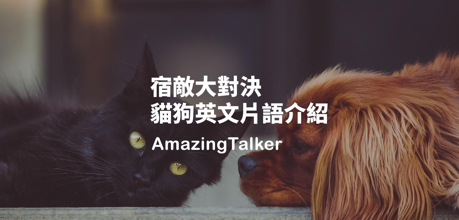 catdog_blog-01.jpg