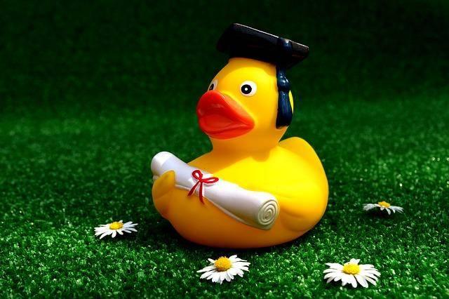 rubber_duck_2821371_640.jpg!thumbnail.jpeg