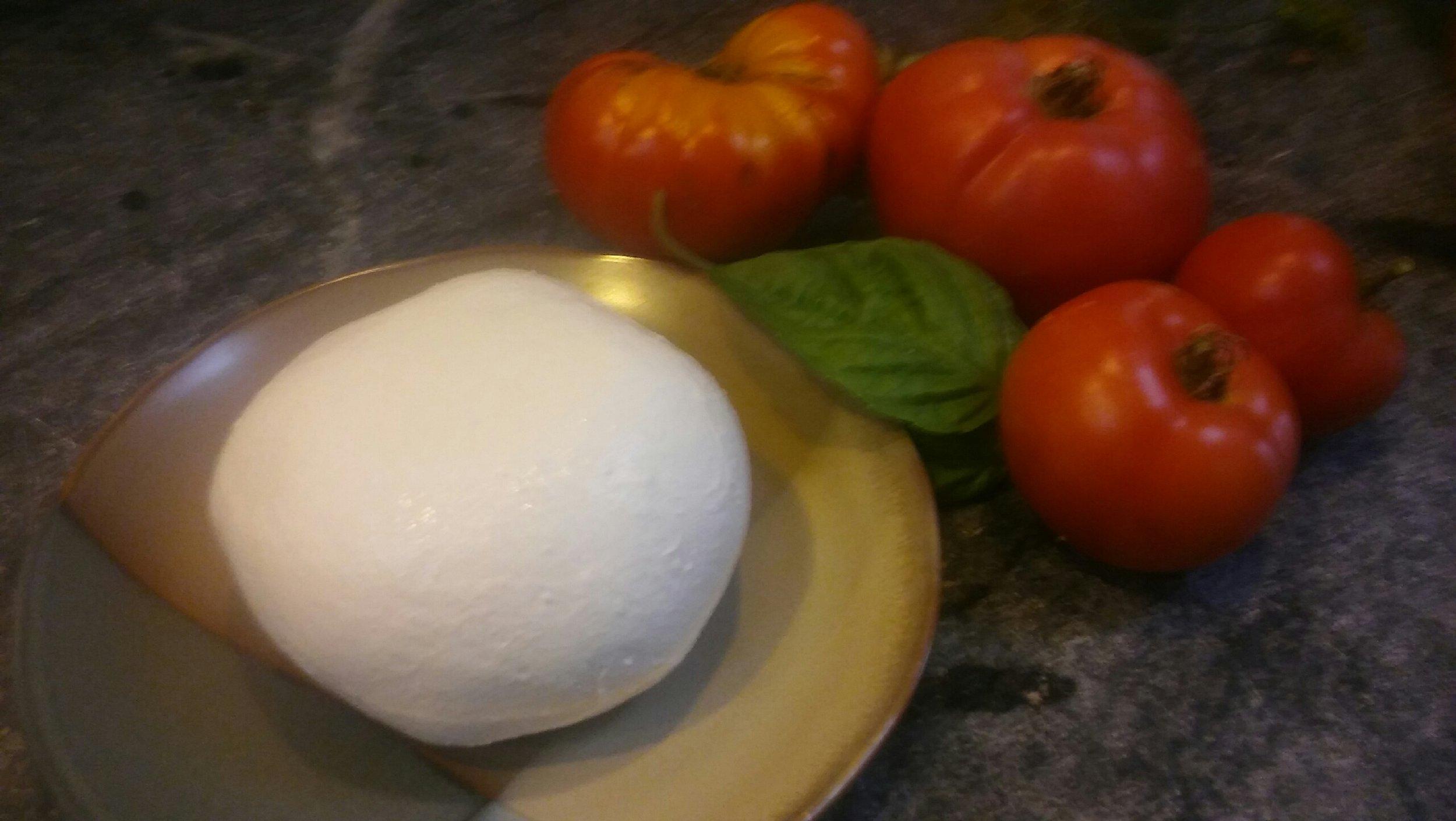 mozzarella-tomato-basil