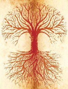 tree with roots.jpg