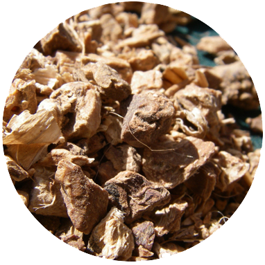ORRIS ROOT   This stubborn, almost stone like dried root from the Iris works as a binding agent helping all the ingredients in our gin to link arms and integrate. It has a very subtle smell of violets, an unmistakable dryness and a faint woodiness.