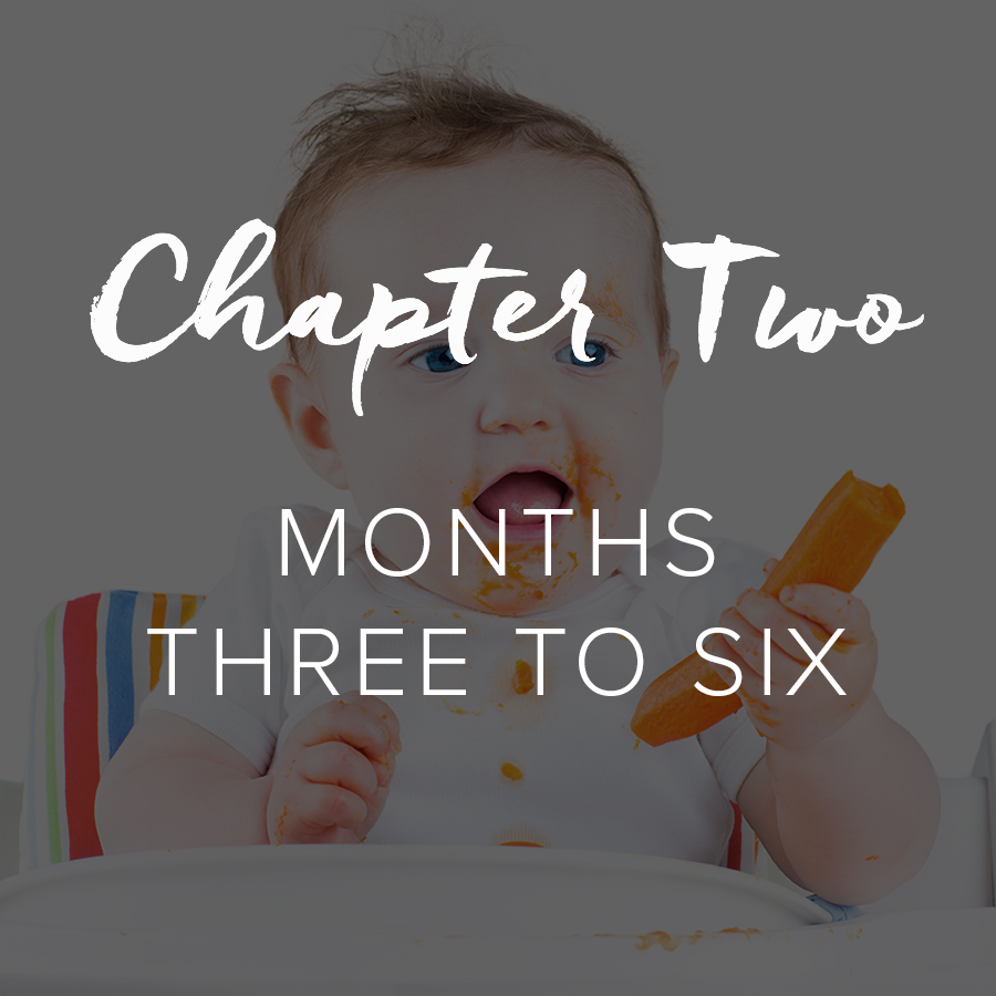 TPC_Chapter-Two.jpg
