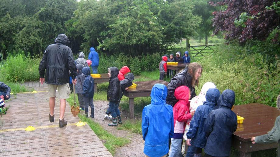 You don't worry about a bit of rain when you're pond dipping!
