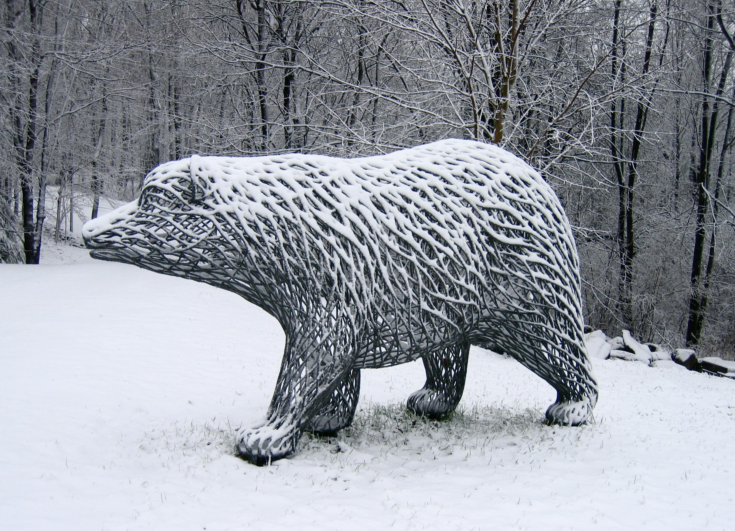 Lumbering Bear