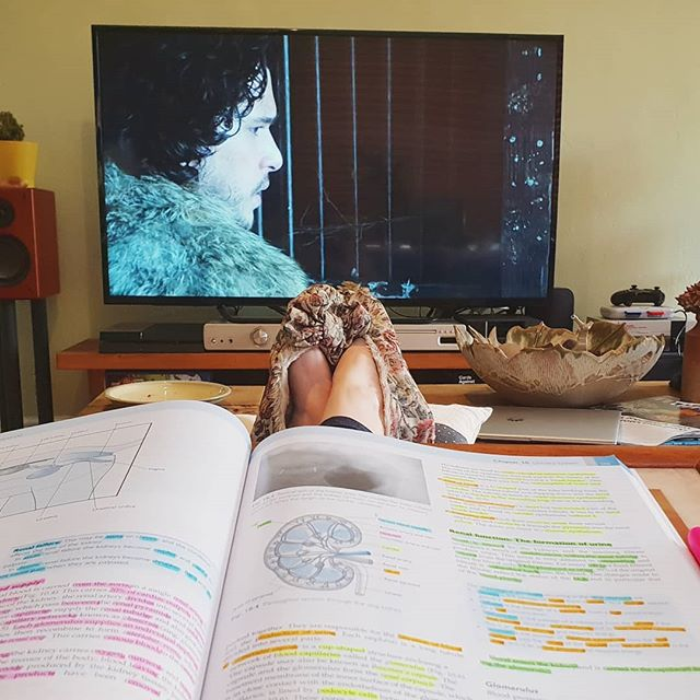 Revision and Game of Thrones. . . .  #Kidneys #Anatomy #Paper2 #SVN #StudentVeterinaryNurse #GameOfThrones #AnatomyAndPhysiology #Revision