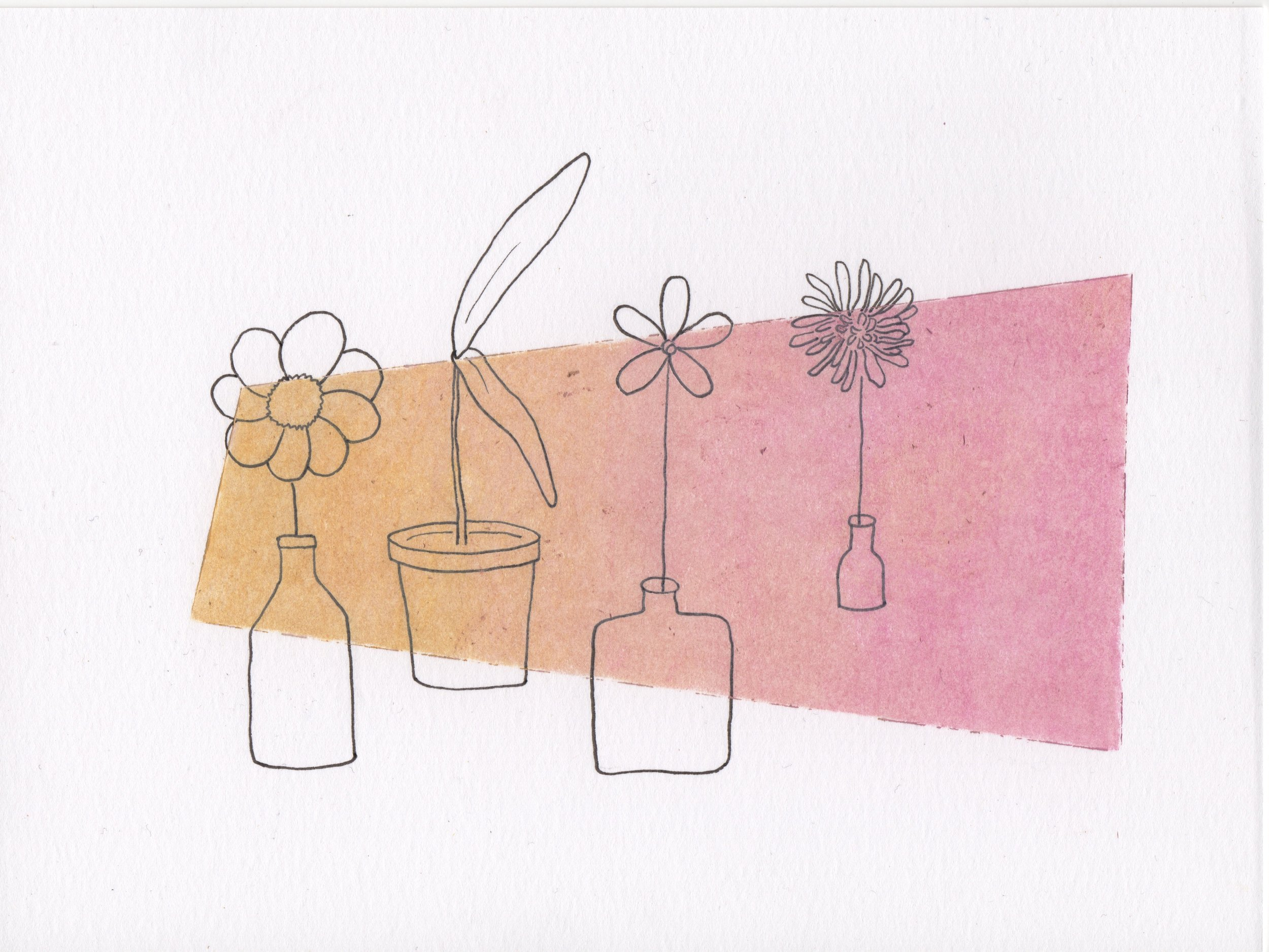 Four Plants Behind a Yellow to Pink Pane.jpg