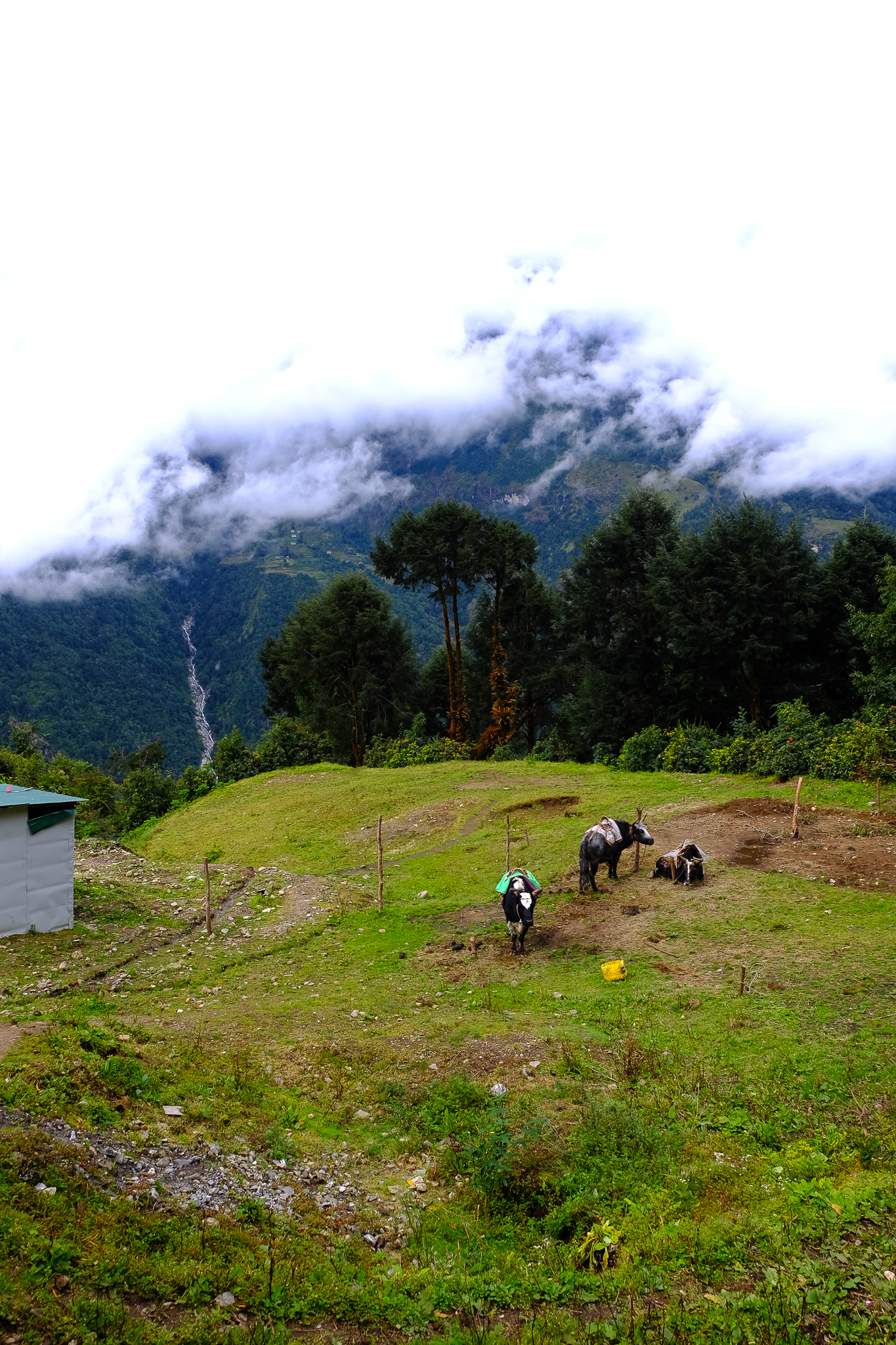 EverestTrekPart1_010.jpg