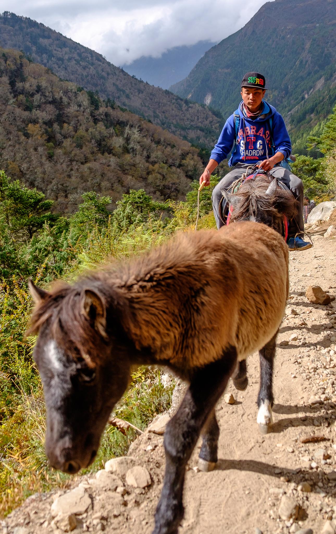 EverestTrekPart8_022.jpg