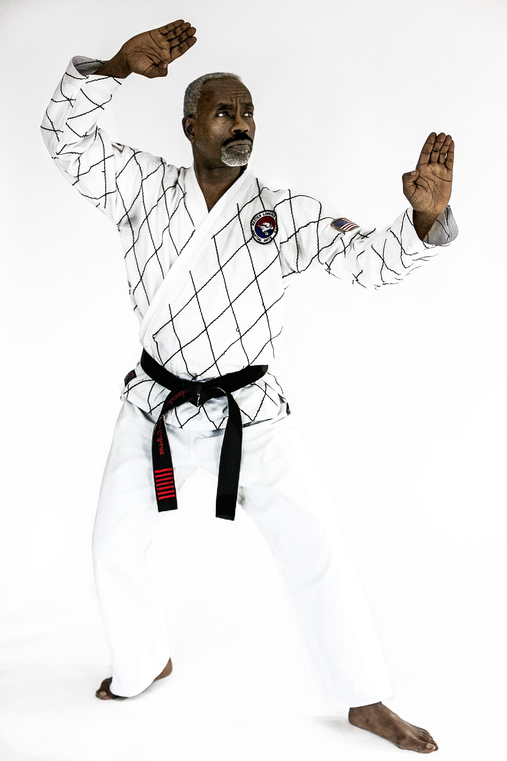 Stances Master Lorenzo Gibson Martial Arts Fine Art