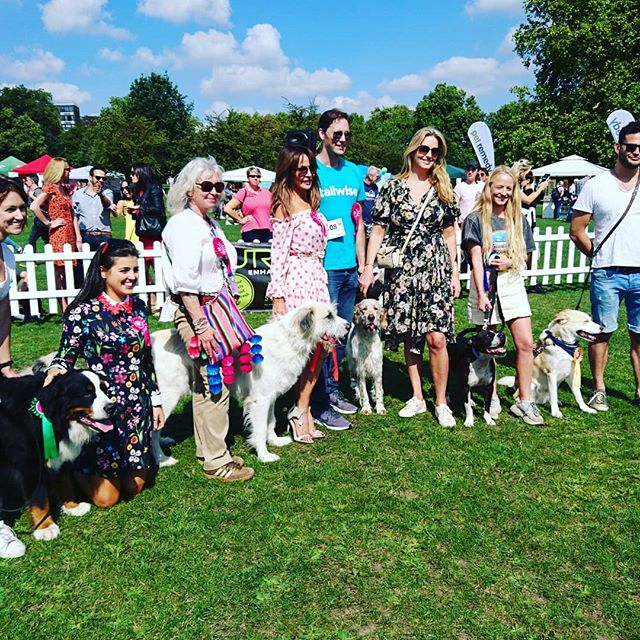 The lovely @penny.lancaster  @lizziecundy & @stormhuntley judging at @pupaidofficial  #adoptdontshop #lucyslaw #rescuedogs #thefamouskind 😍☀️🐶