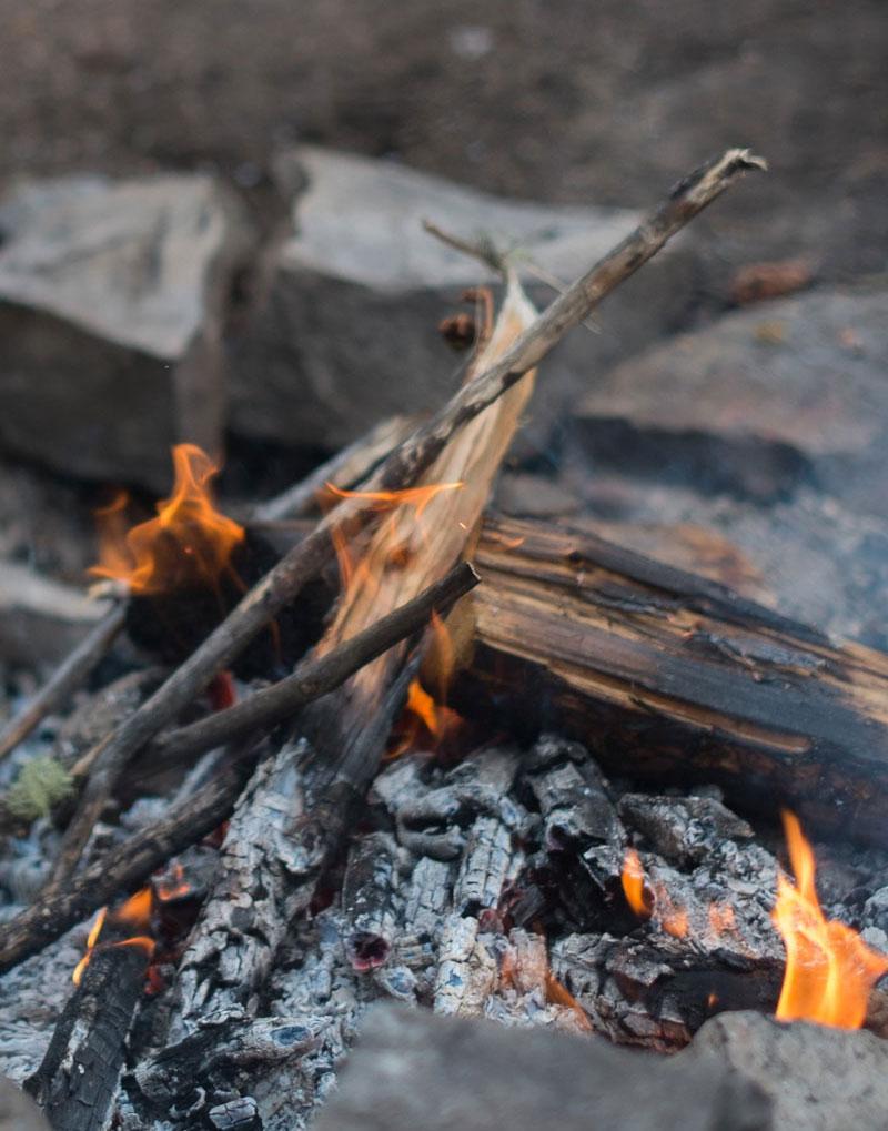Gather round a virtual viking fire